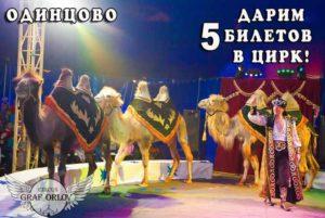 ГРАФОРЛОВ, цирк, шоу